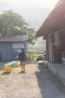 https---www.pakutaso.com-assets_c-2013-08-PAK86_huruminkanoniwasaki500-thumb-autox1000-3392.jpg